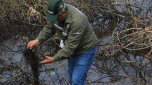 Naufrágio de embarcação causavazamento de óleo diesel no Rio Negro