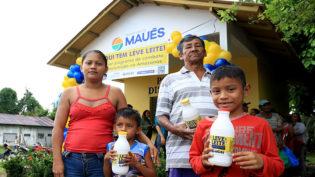 Programa social distribui mais de 500 mil litros de leite em Maués