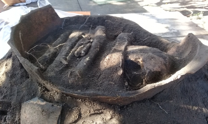 Urna funerária indígena, Parintins