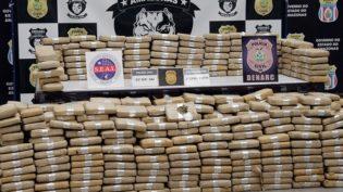 De janeiro a agosto foram apreendidos R$ 60 milhões em drogas no Amazonas