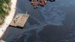 Óleo poluiu margem do Rio Negro ao vazar de rebocador (Foto: Ricardo Oliveira/Ipaam)