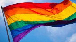 Bandeira LBGT é pela defesa de maior atendimento aos gays na rede pública de saúde (Foto: Divulgação)