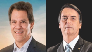 Polarização Bolsonaro-Haddad impulsiona robôs nas redes sociais