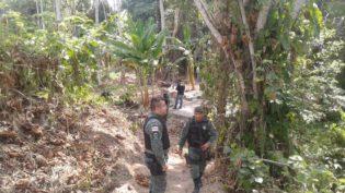 Prefeitura monitora Corredor Ecológico do Mindu para impedir invasão