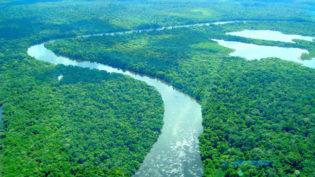 Hostilidade de filhos de Bolsonaro a aquecimento global preocupa ambientalistas