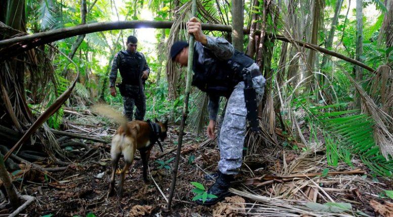 Policial militar busca restos de corpos enterrados em área da zona centro-sul de Manaus usado para enterrar vítimas de assassinatos (Foto: SSp-AM)