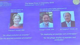 Americanos e britânico ganham Nobel de Química por estudo sobre proteínas
