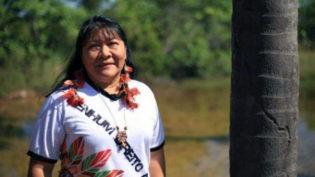 País elege primeira indígena deputada federal desde 1982