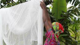Mesmo lavado várias vezes, inseticida não sai de mosqueteiro que será distribuído a moradores de municípios do Amazonas Foto: Bayer/Divulgação)