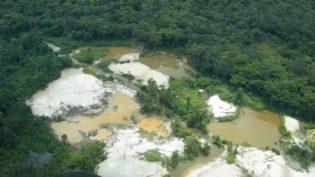 Justiça Federal em Roraima age em favor dos Ianomani; no Amazonas, não
