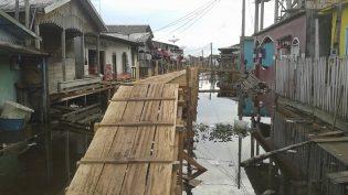 Ibama doa madeiras para construção de 1,2 km de pontes em Manacapuru