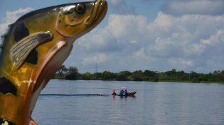 Amazonastur quer mais espanhóis pescando tucunaré no Estado