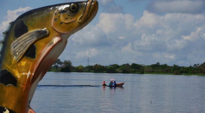 Passeio nos rios e pesca esportiva do tucunaré são os maiores interesses dos espanhóis no Amazonas (Foto: Clóvis Miranda/Secom)