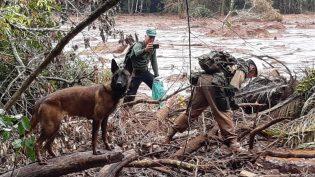 Voluntários amazonenses ajudam nas buscas em Brumadinho