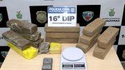 Os 11 quilos de maconha foram avaliados em R$ 55 mil (Foto: PC-AM/Divulgação)