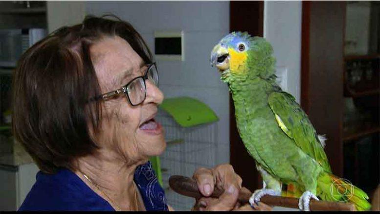 Dona Izaura com Leozinho: amizade que o Ibama não conseguiu acabar (Foto: TV Globo/Reprodução)