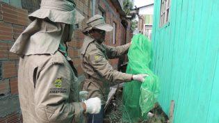 Incidência de malária cai no Amazonas em janeiro deste ano, informa FVS