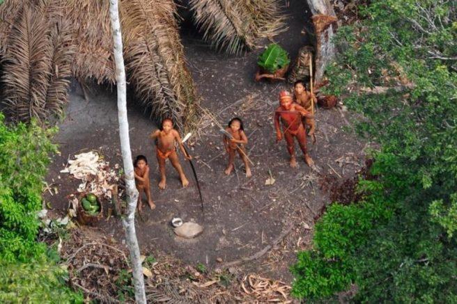 Índios isolados no Amazonas (Foto: Gleison Miranda/Funai/Divulgação)