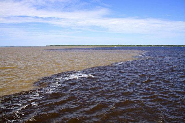 Blocos de exploração de petróleo são próximos ao Encontro das Águas, diz MPF (Foto: Divulgação)