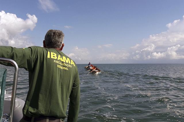 Após ação do Ibama, Bolsonaro prometeu retaliar (Foto: Ibama/Divulgação)