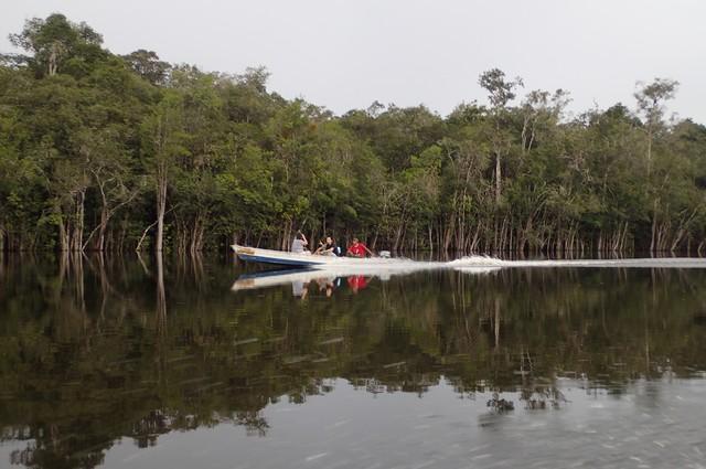 Atividades científicas poderão ser implementadas como ações educativas e de turismo científico (Foto: Inpa/Divulgação)