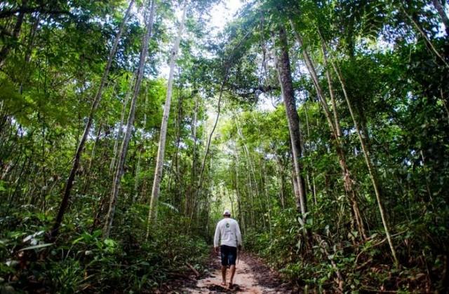 Concurso premiará foto ou vídeo relacionado à preservação ambiental (Foto: Marcelo Camargo/Agência Brasil)