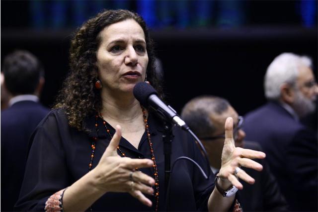 Jandira Feghali quer mais tempo para debater projeto (Foto: Antônio Augusto/Agência Câmara)