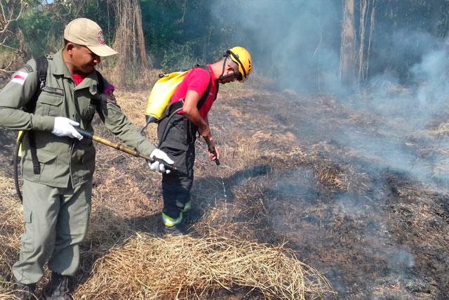 Combate às queimadas no Amazonas