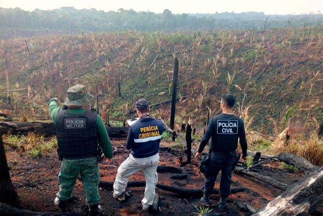 Queimadas na Amazônia