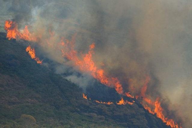 queimada incêndio amazônia