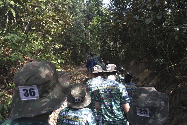 trilha-selva