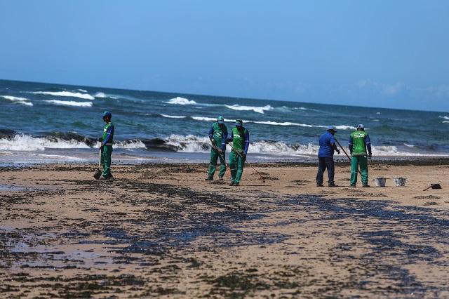 óleo no litoral brasileiro - desastre