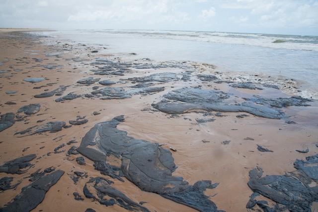 MPF afirma que 2.100 km nos nove estados da região nordeste foram afetados desde o fim de agosto, quando as primeiras manchas de óleo surgiram (Foto: Secom/Sergipe/Fotos Públicas)
