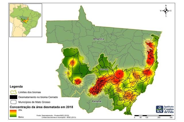 Metade do Cerrado que desapareceu em 2018 estava em apenas 15 municípios, sendo Paranatinga o primeiro do ranking (Foto: Instituto Centro de Vida/Reprodução)