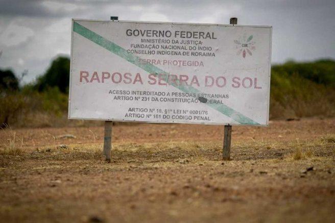 Raposa-Serra-do-Sol