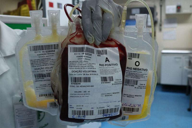 sangue-hemoam