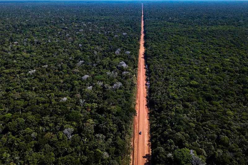 Edital é para asfaltar 52 quilômetros da BR-319 (Foto: Dnit/Divulgação)