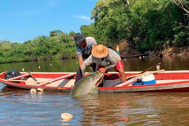 Pescadores precisam cumprir exigências (Foto: Sepa/Sepror)