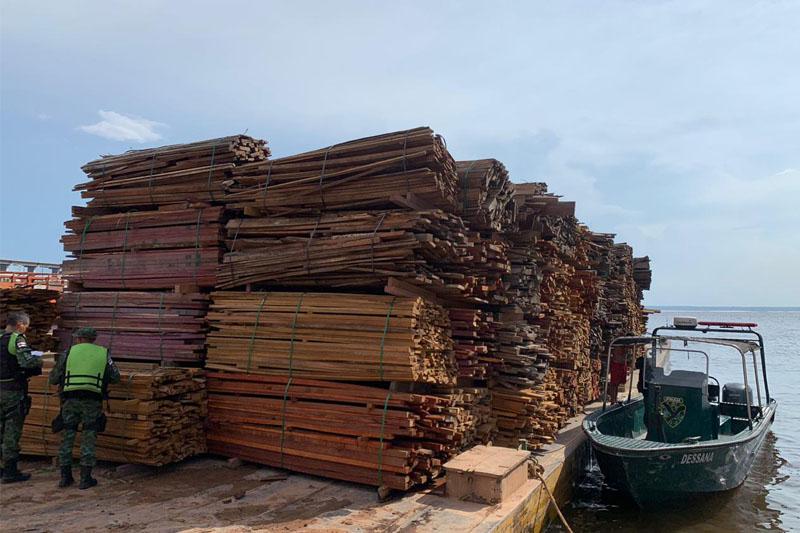 apreensao de madeira ilegal