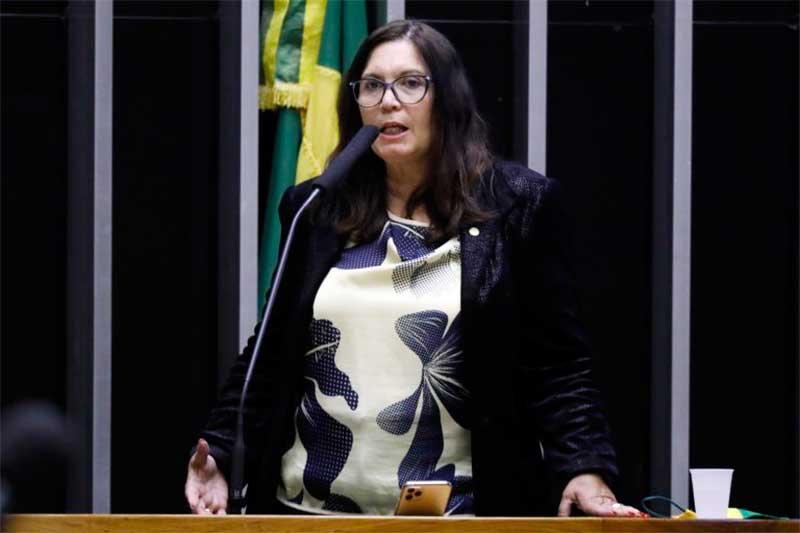 Deputada Bia Kicis é autora do projeto de lei (Foto: Maryanna Oliveira/Agência Câmara)