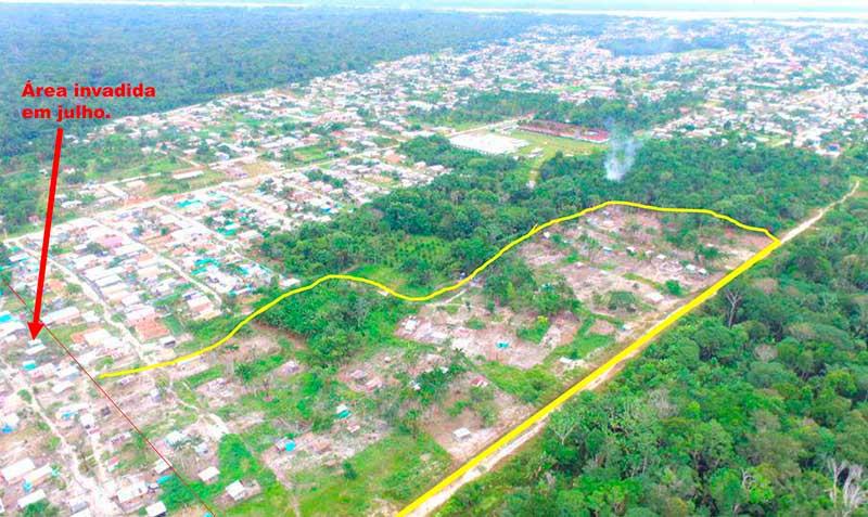 Área invadida foi desmatada (Foto: Procuradoria Federal/Divulgação)