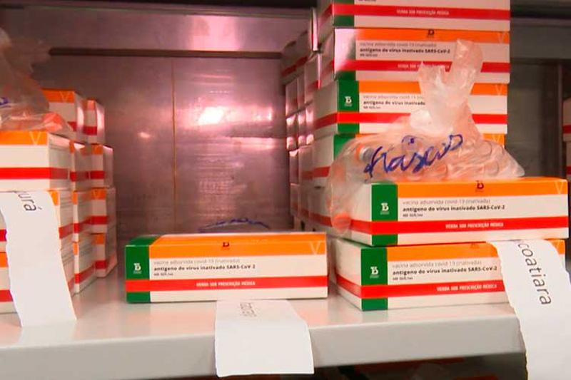 vacinas armazenadas fvs-am