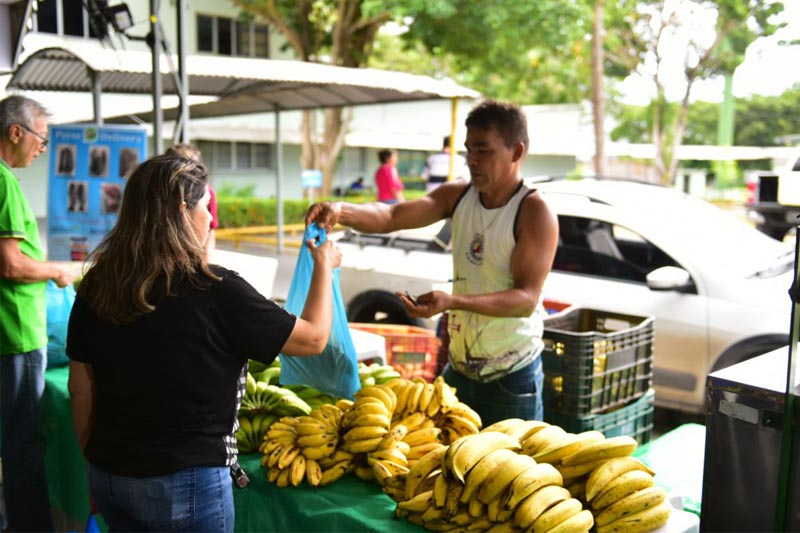 banana amazonas