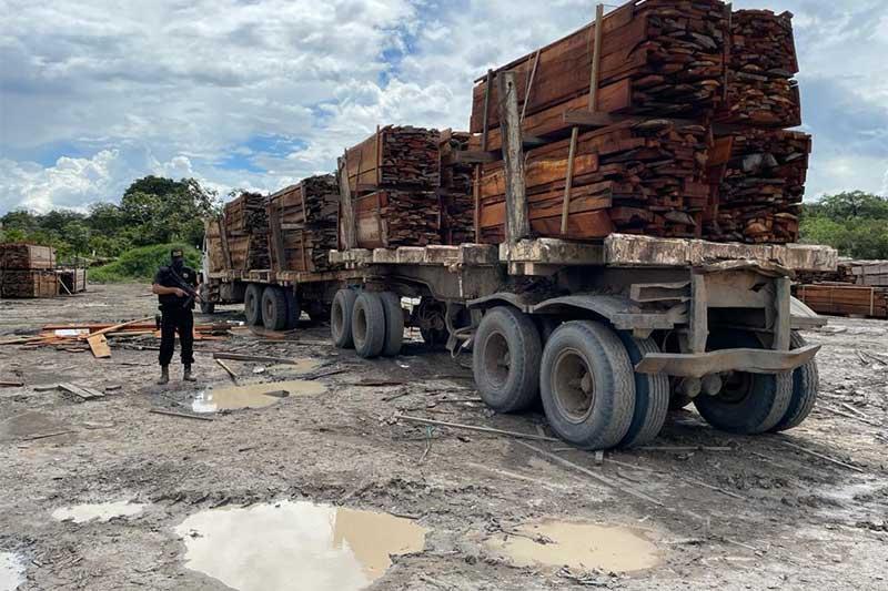 Carreta com madeira também foi apreendida (Foto: PF-AM/Divulgação)