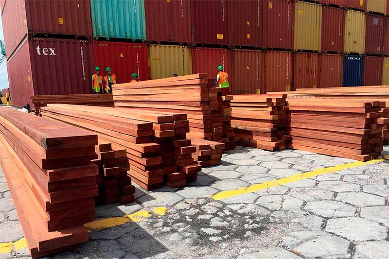 Apreensão de madeira em Manaus: PF investiga rede de crime ambiental (Foto: PF-AM)