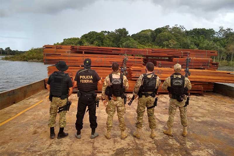 Madeira apreendida foi doada à Defesa Civil (Foto: PF-AM/Divulgação)