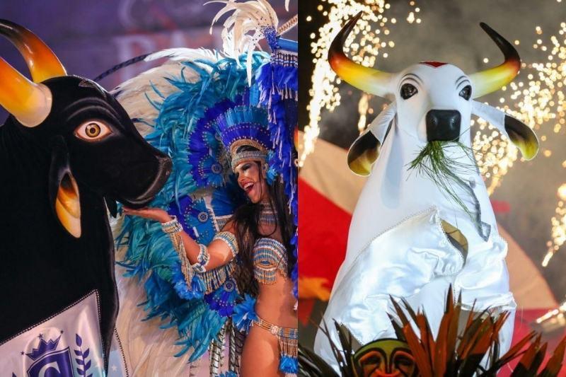 Festival de Parintins é adiado pelo segundo ano consecutivo (Foto: Michael Dantas)