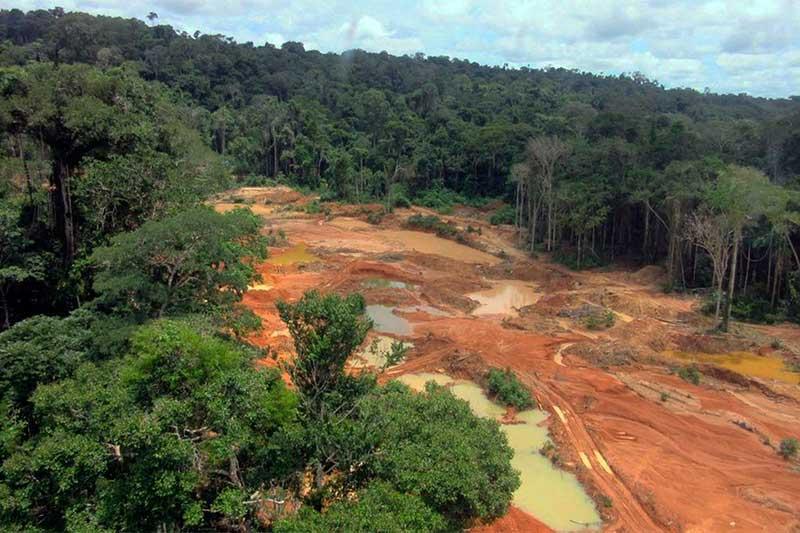 Garimpo ilegal em terra indígena: projeto de lei é ilegal, afirma PGR (Foto: Polícia Federal/Divulgação)