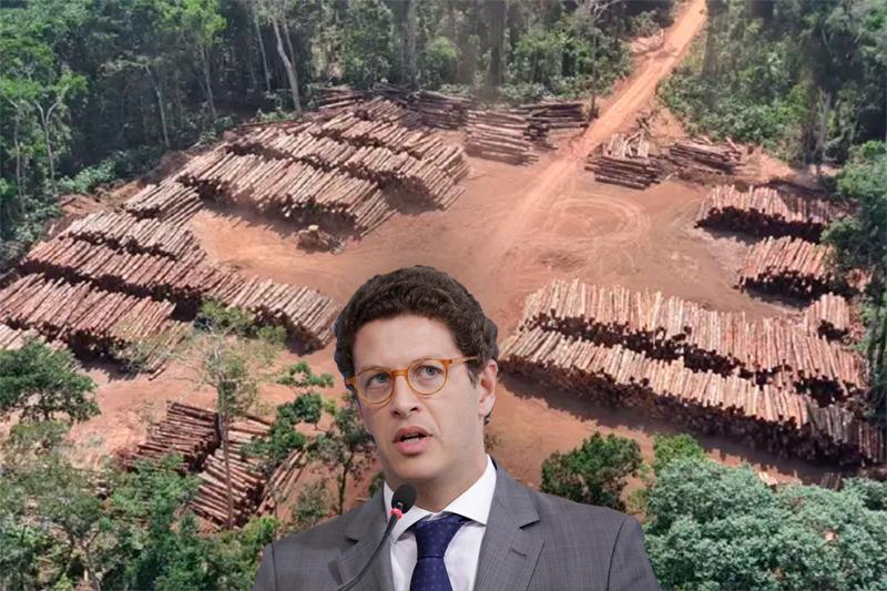 Ricardo Salles e madeira apreendida