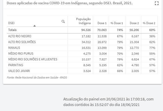 vacinacao indigenas dseis no amazonas